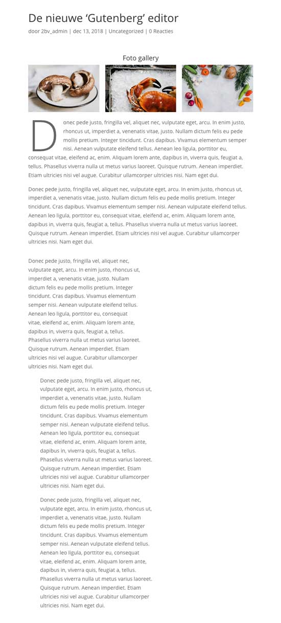 2bvisibe gutenberg wordpress 04