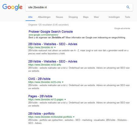 google site info 2BVisible